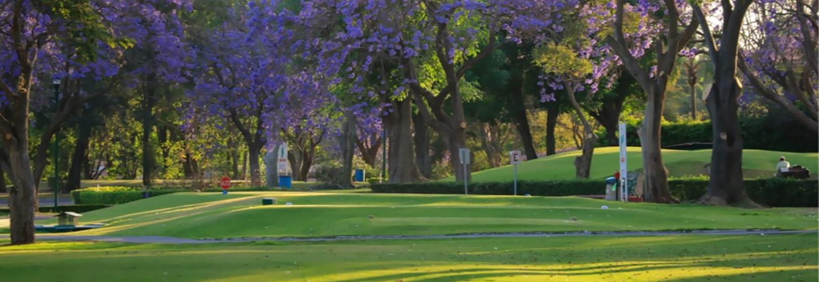 Campos De Golf En Guadalajara
