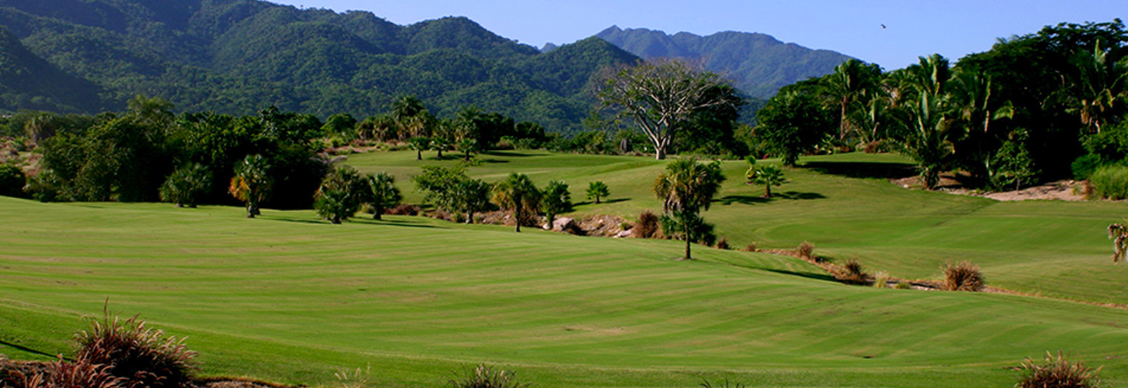 Club de Golf Vista Vallarta Nicklaus