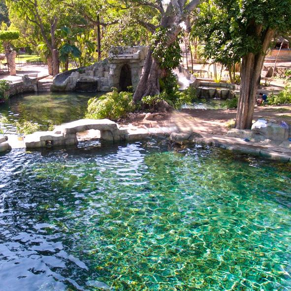 Parques recreativos en morelos for Vivero santa isabel