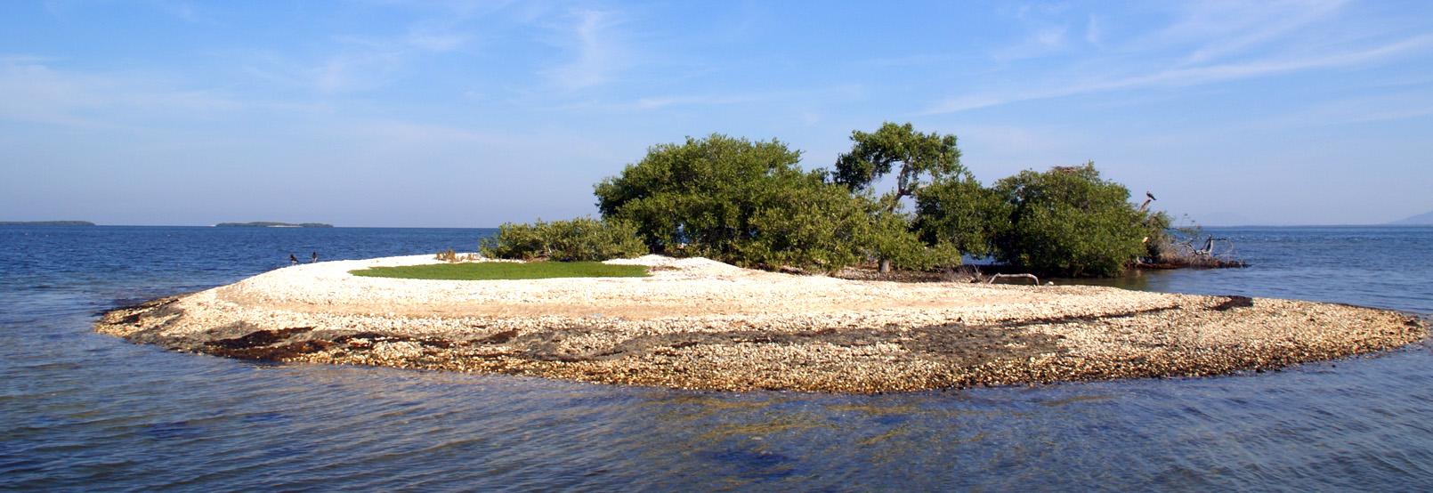 Maravillas naturales en sinaloa for Villas tortuga celestino gasca sinaloa